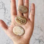 Coral Fosil M/L